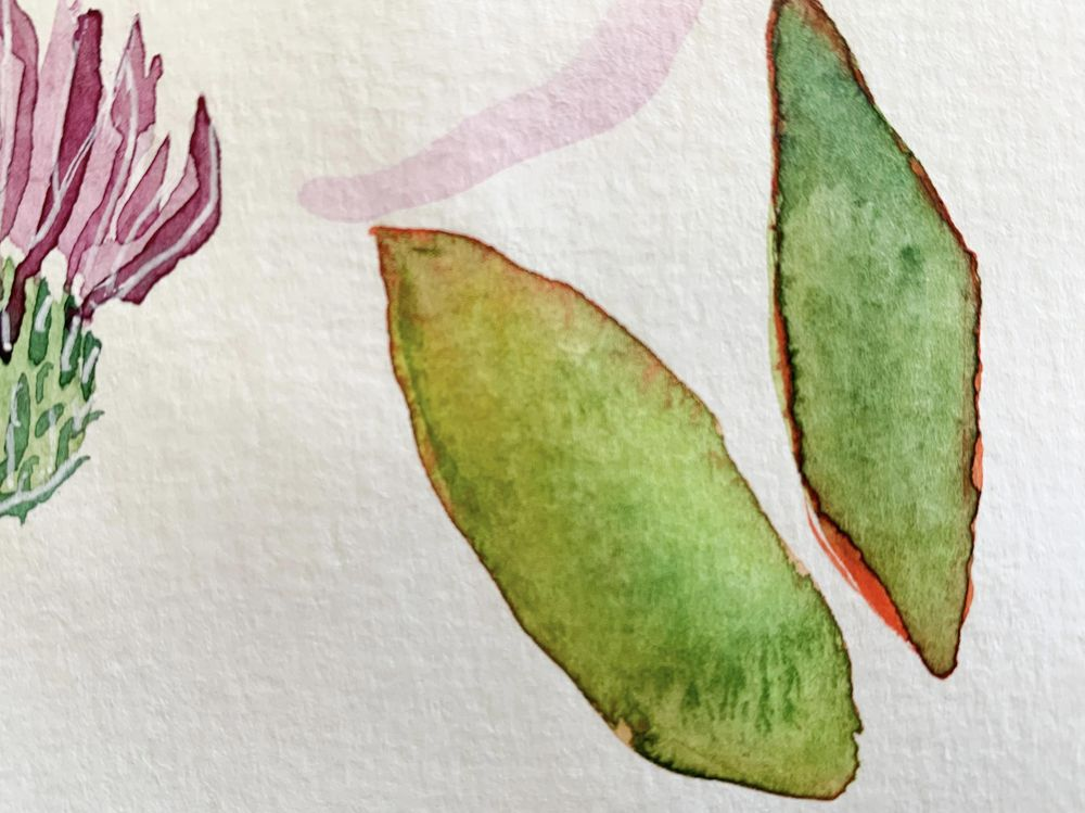 Watercolor Blooms - image 5 - student project