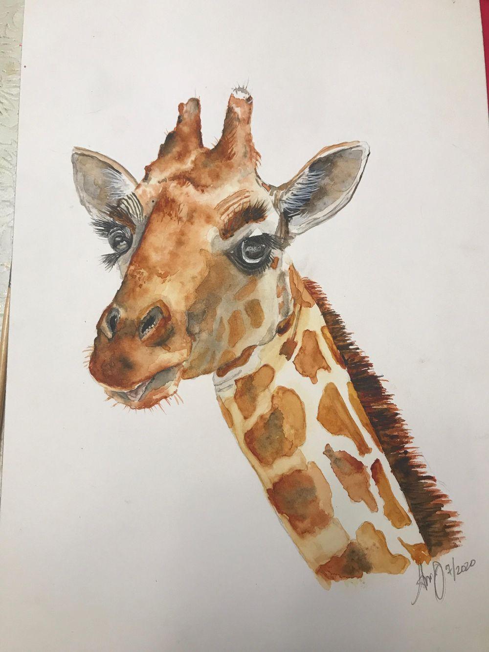 wc giraffe 1 & 2 - image 1 - student project