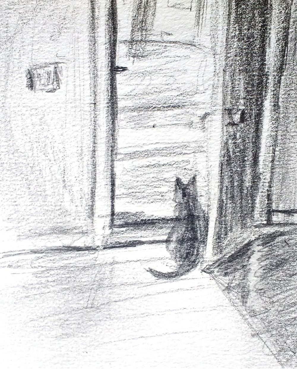 Cat Looking out Door (sketch to digital painting) - image 1 - student project