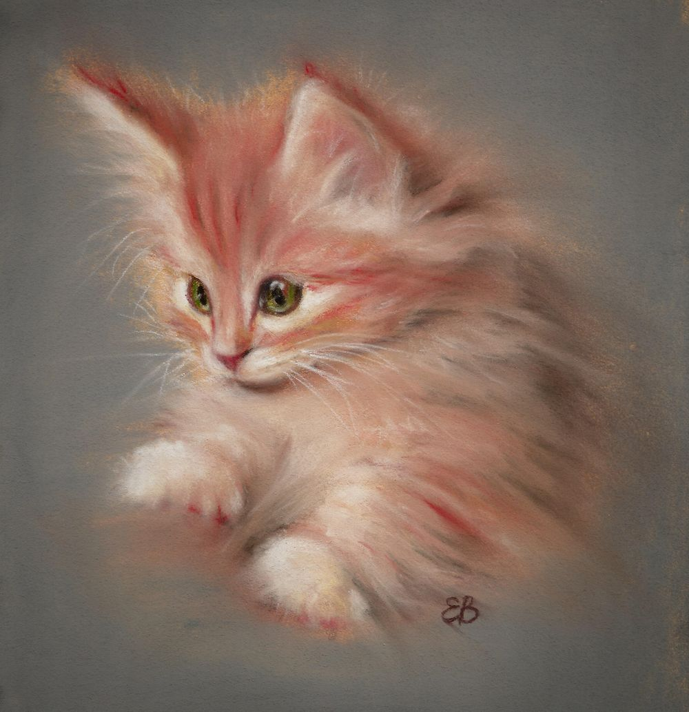 A fluffy kitten - image 1 - student project