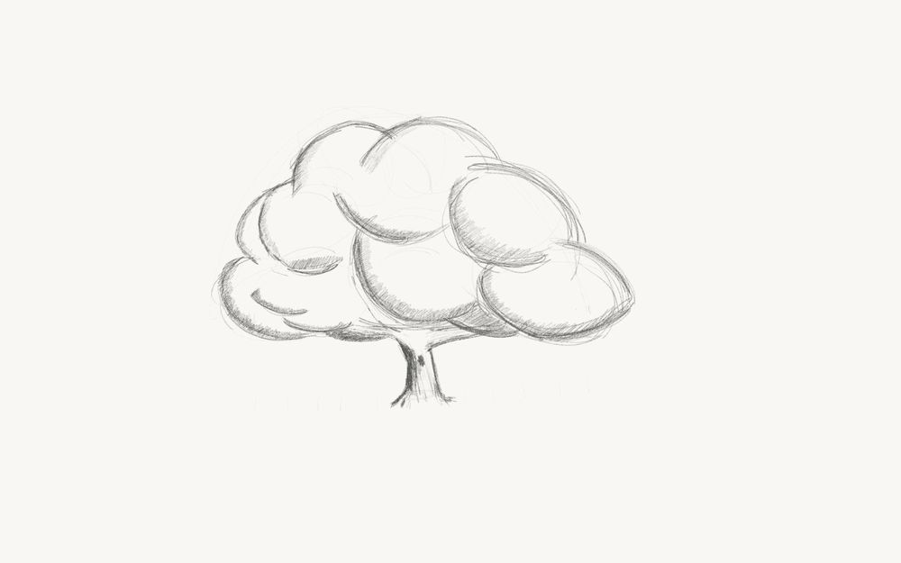 Sketching a tree - image 2 - student project