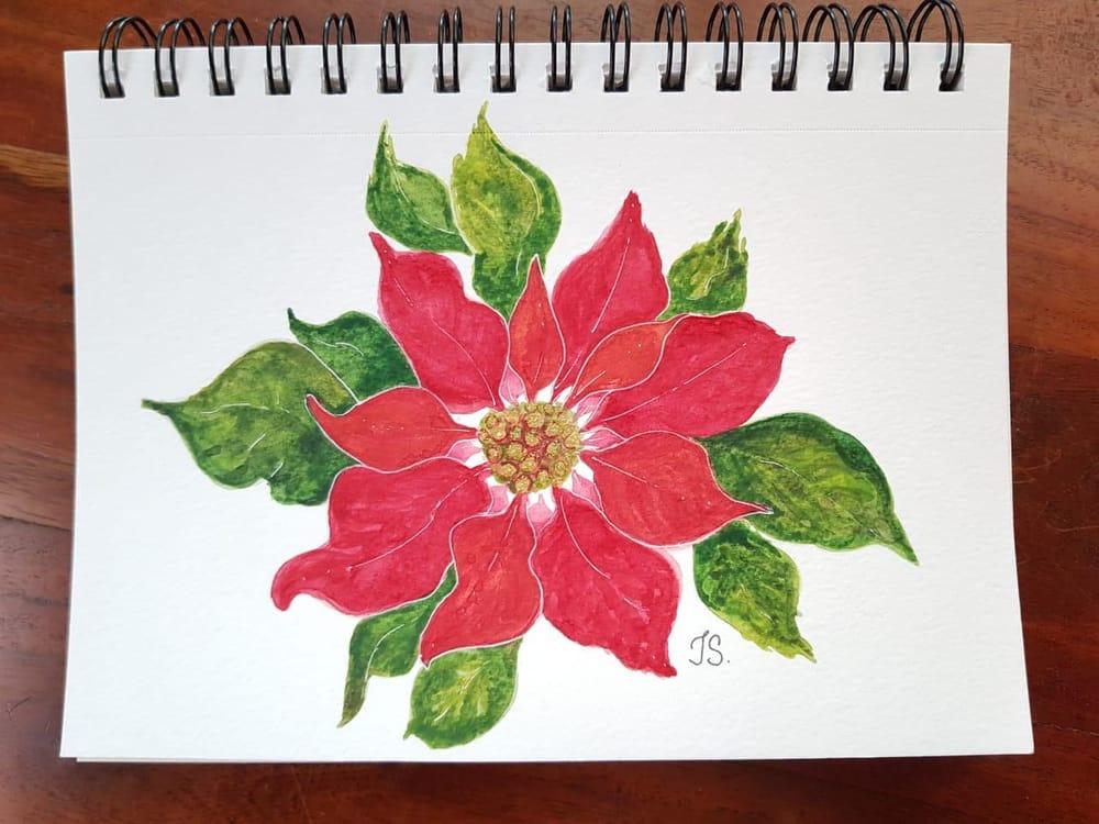 Gnomo castaño y Flor de Navidad - image 1 - student project