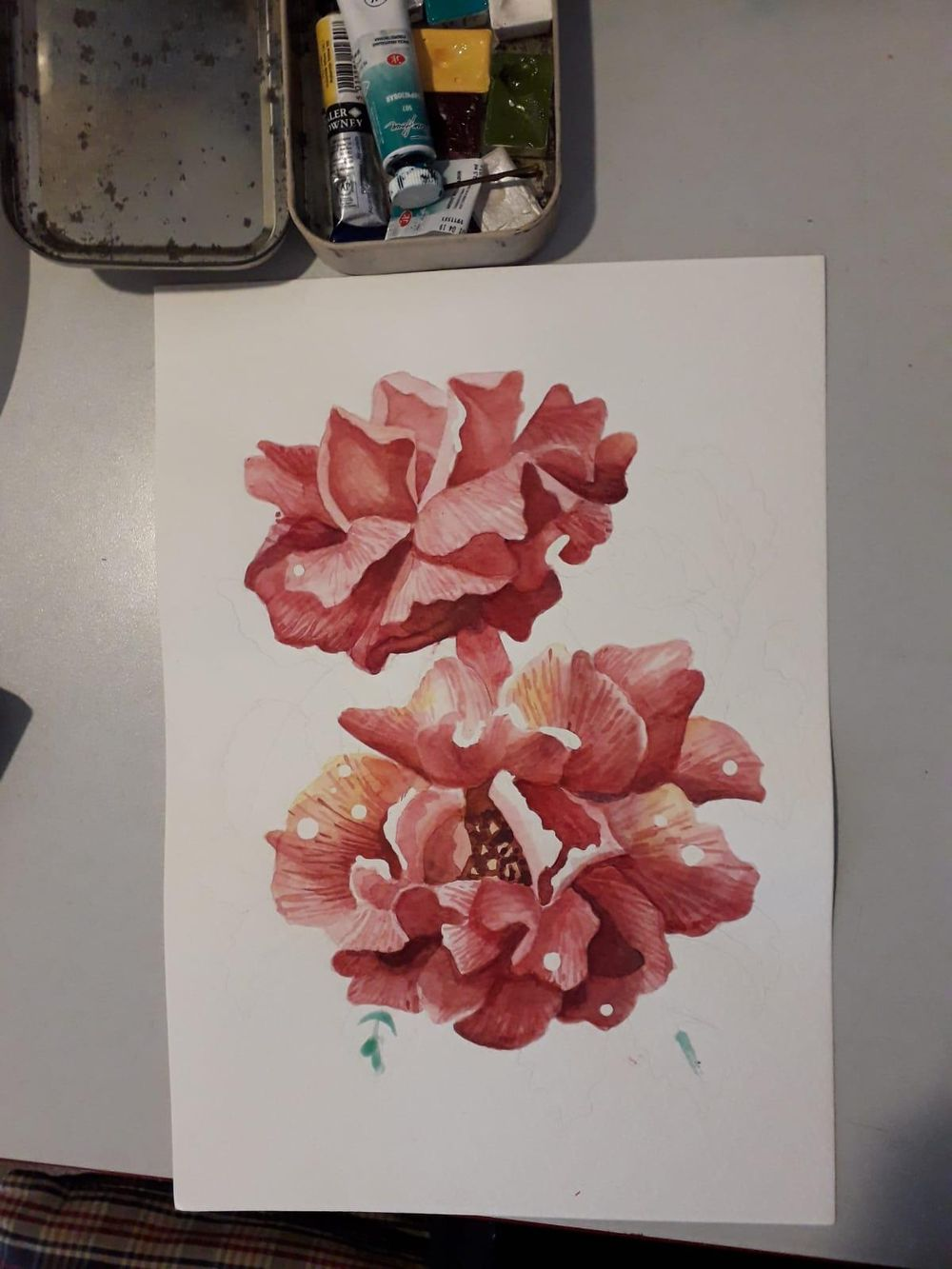 rose - image 2 - student project