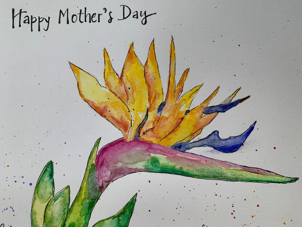 Watercolor Bird of Paradise - image 1 - student project