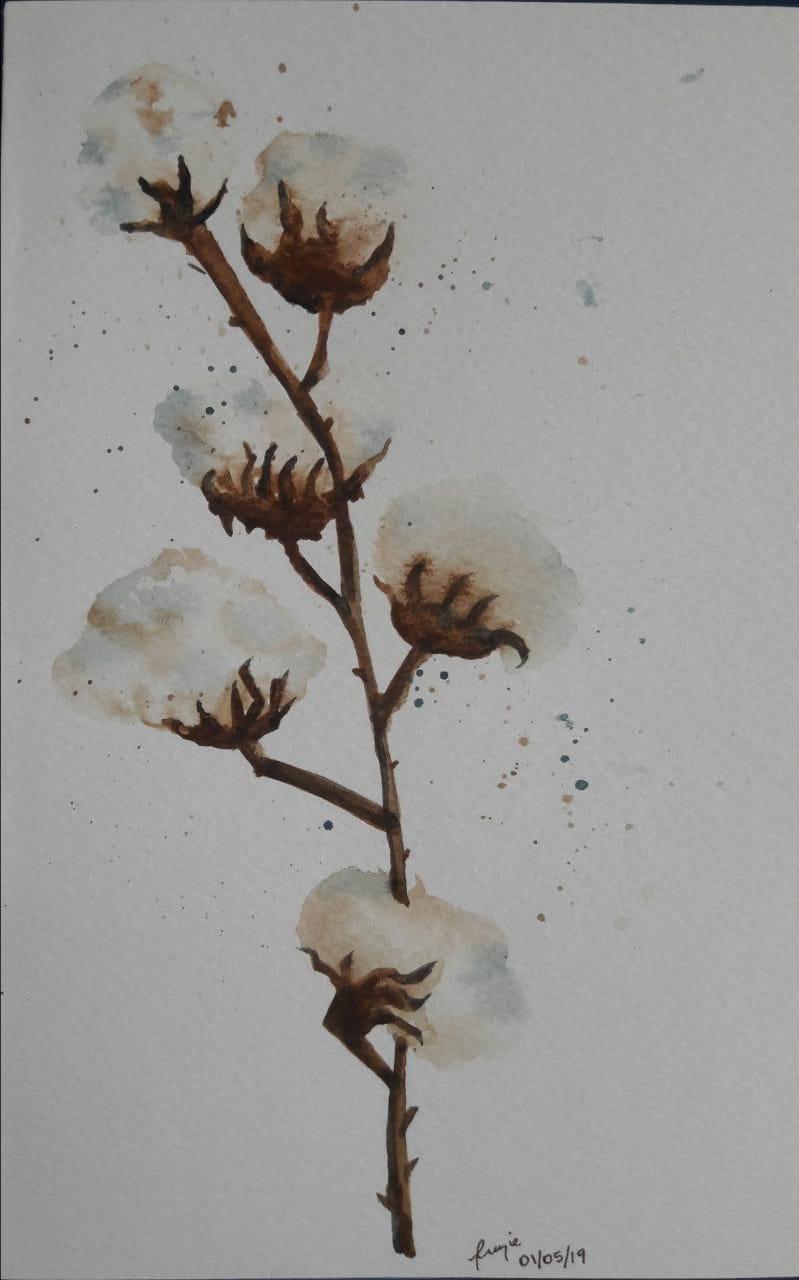 Cotton stalk - image 1 - student project