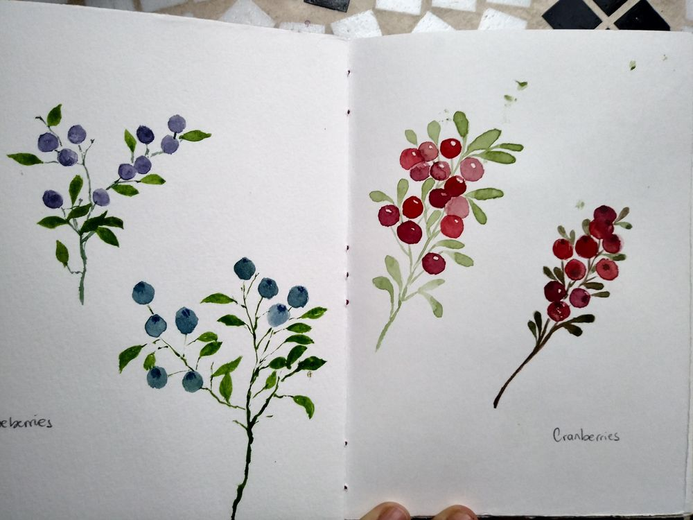 Berries everywhere - image 2 - student project