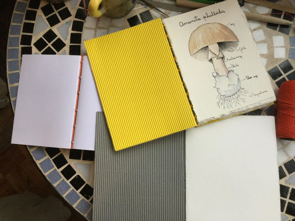 First books - image 1 - student project