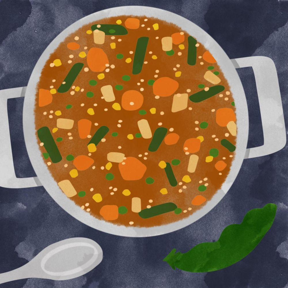 Chicken & veggie soup - image 1 - student project