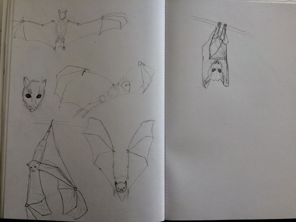 Animals - image 9 - student project