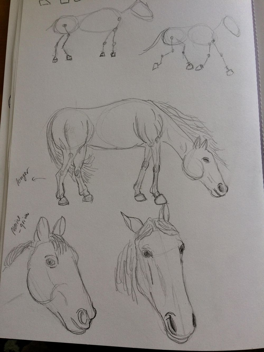 Animals - image 6 - student project