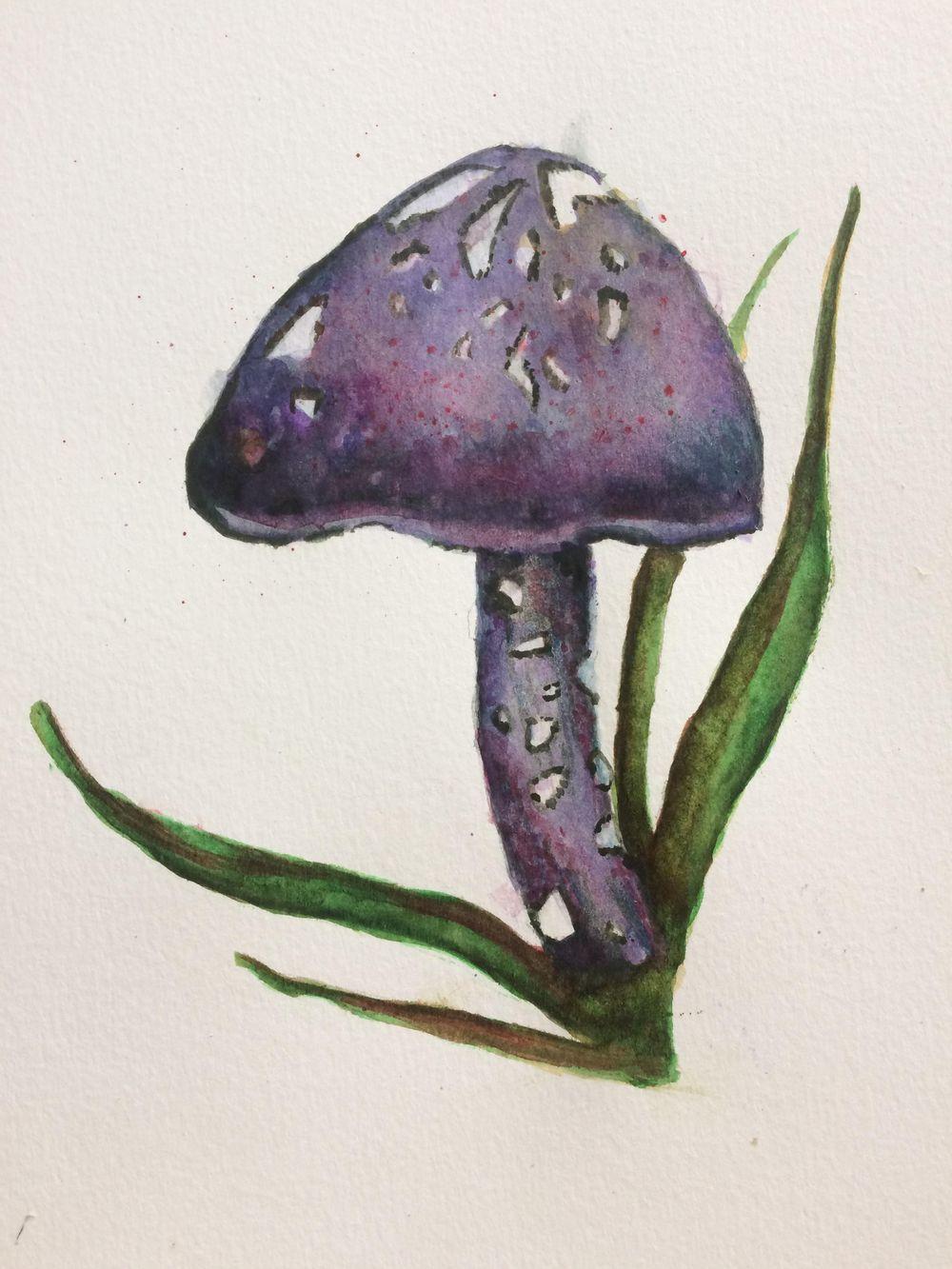 Watercolor mushroom - image 1 - student project