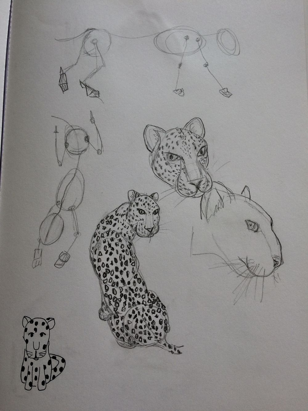 Animals - image 4 - student project