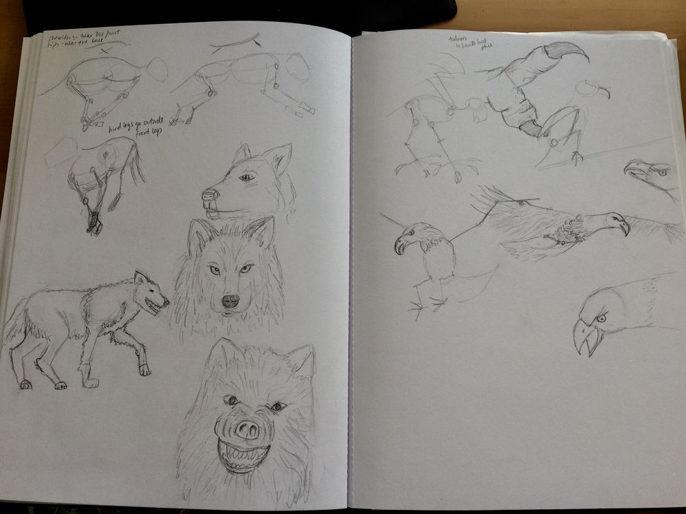 Animals - image 2 - student project