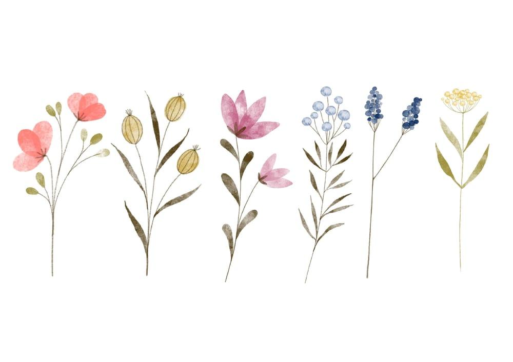 Flowers Haiku Poem - image 3 - student project