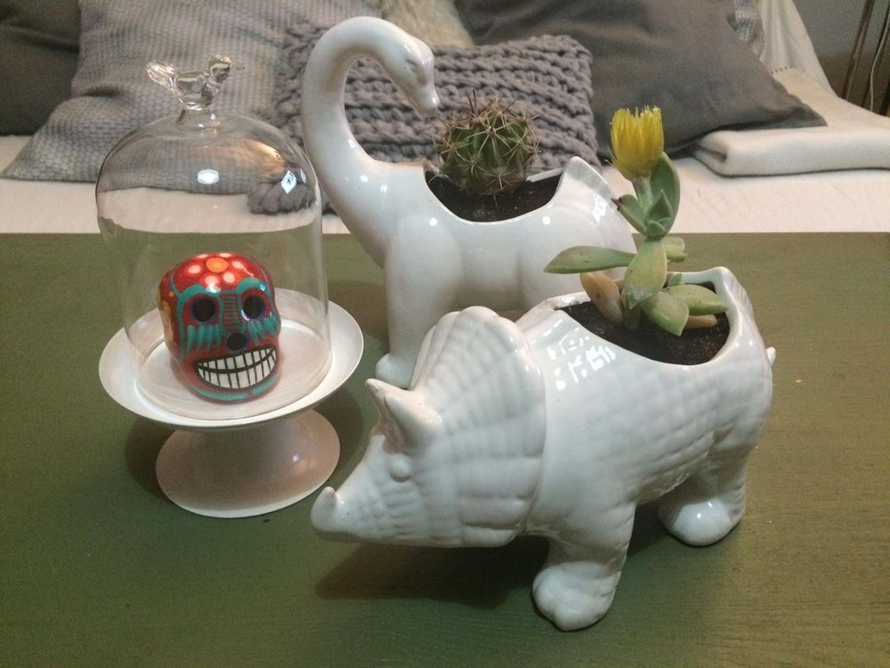 Cactus and Dinosaurs - image 6 - student project