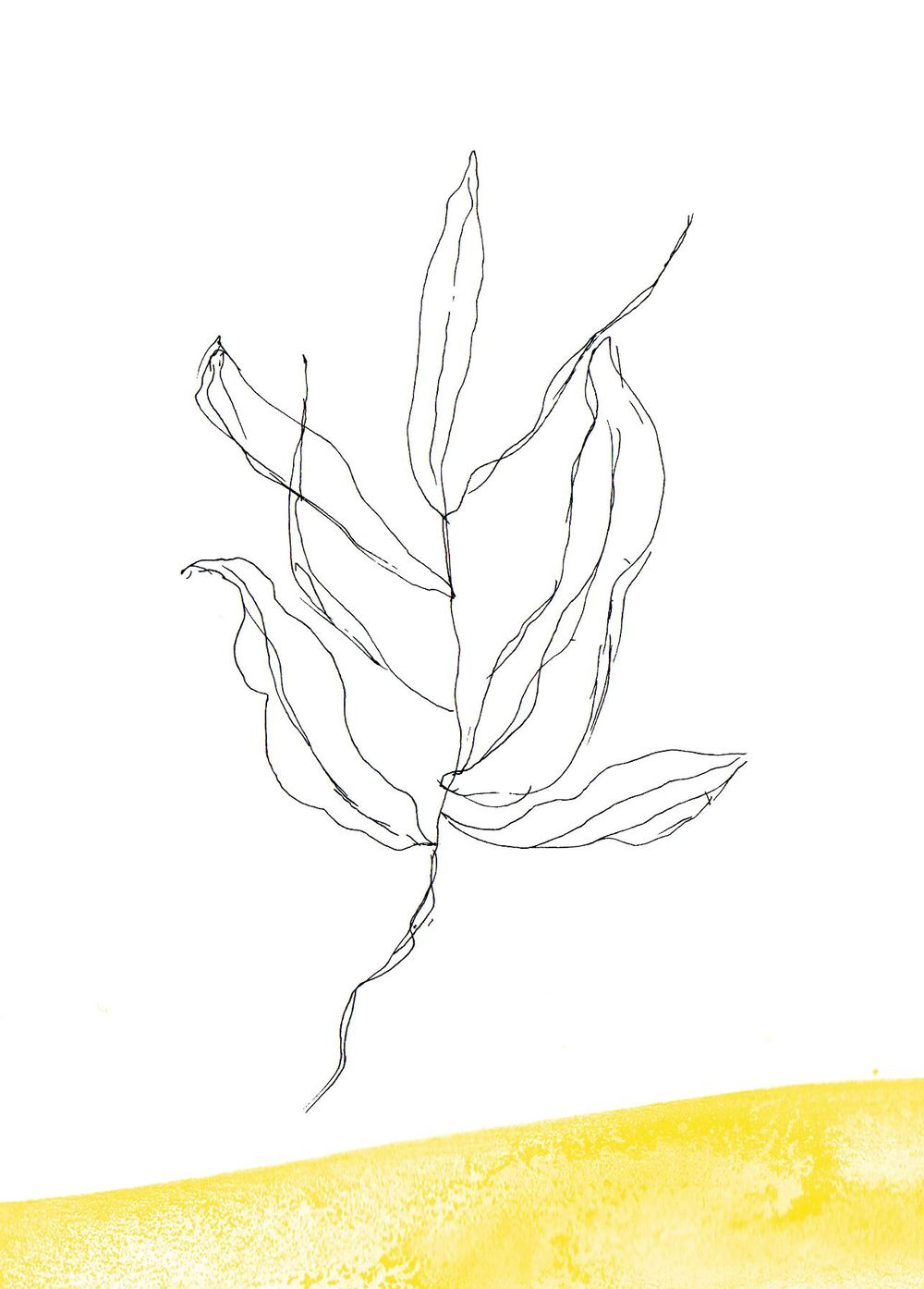 Botanical - image 3 - student project
