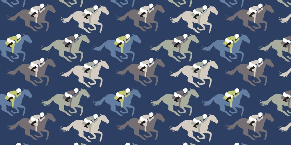 Horse racing pattern - image 1 - student project