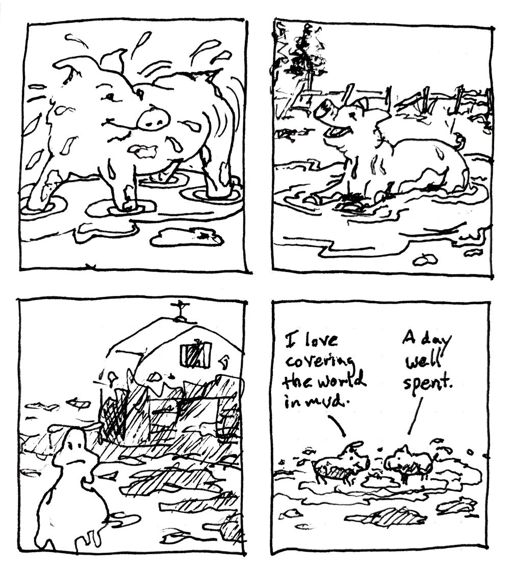 4 panel pig comic - image 1 - student project