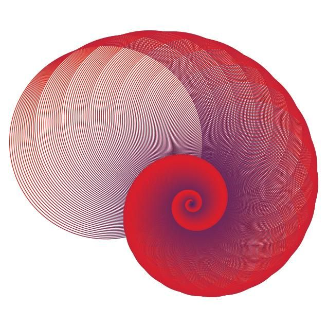 Spirals, spirals, spirals - image 3 - student project