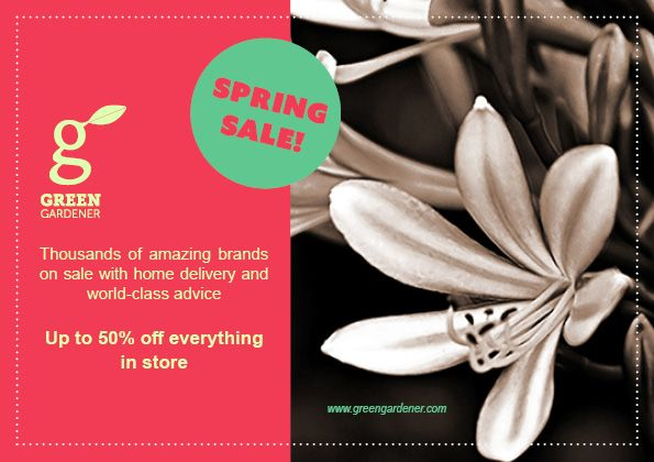 Green Gardener Flyer and Newsletter - image 2 - student project