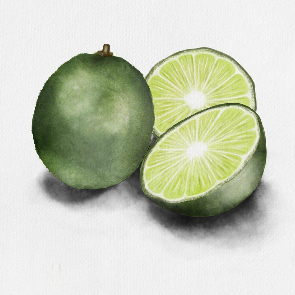 Citrus Study - image 3 - student project