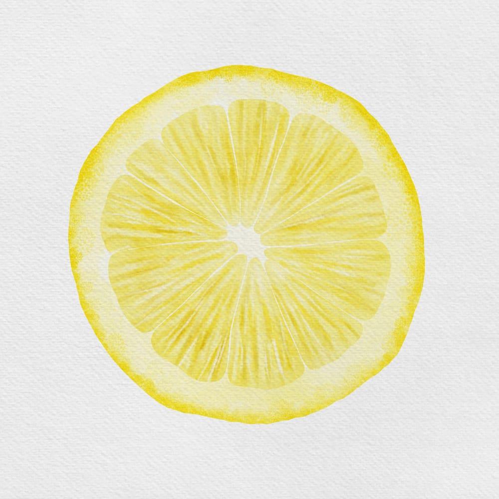Citrus Study - image 2 - student project