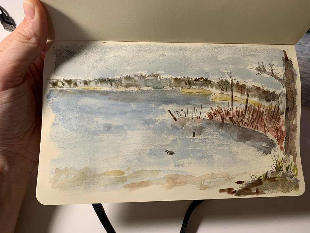 Our local lake - image 2 - student project