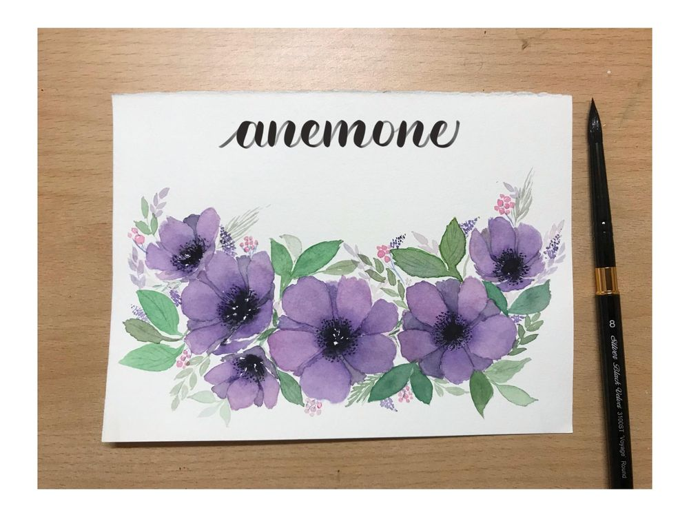 Violet Anemones - image 1 - student project