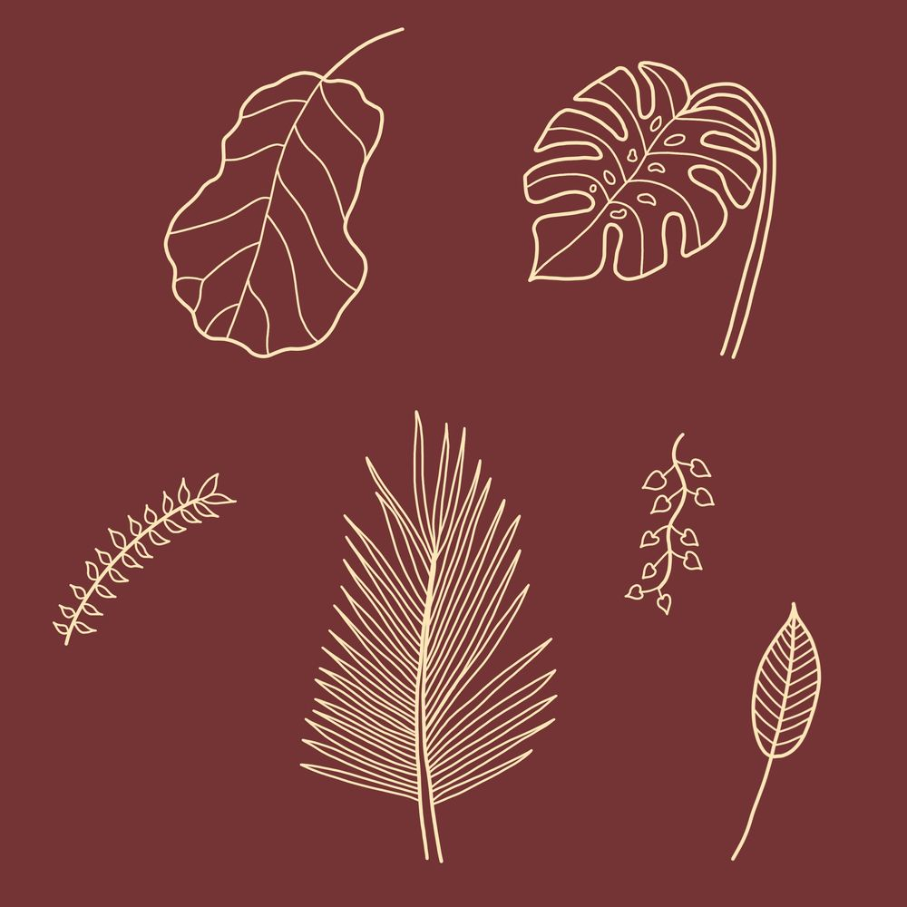 Plant Illustrations - image 4 - student project