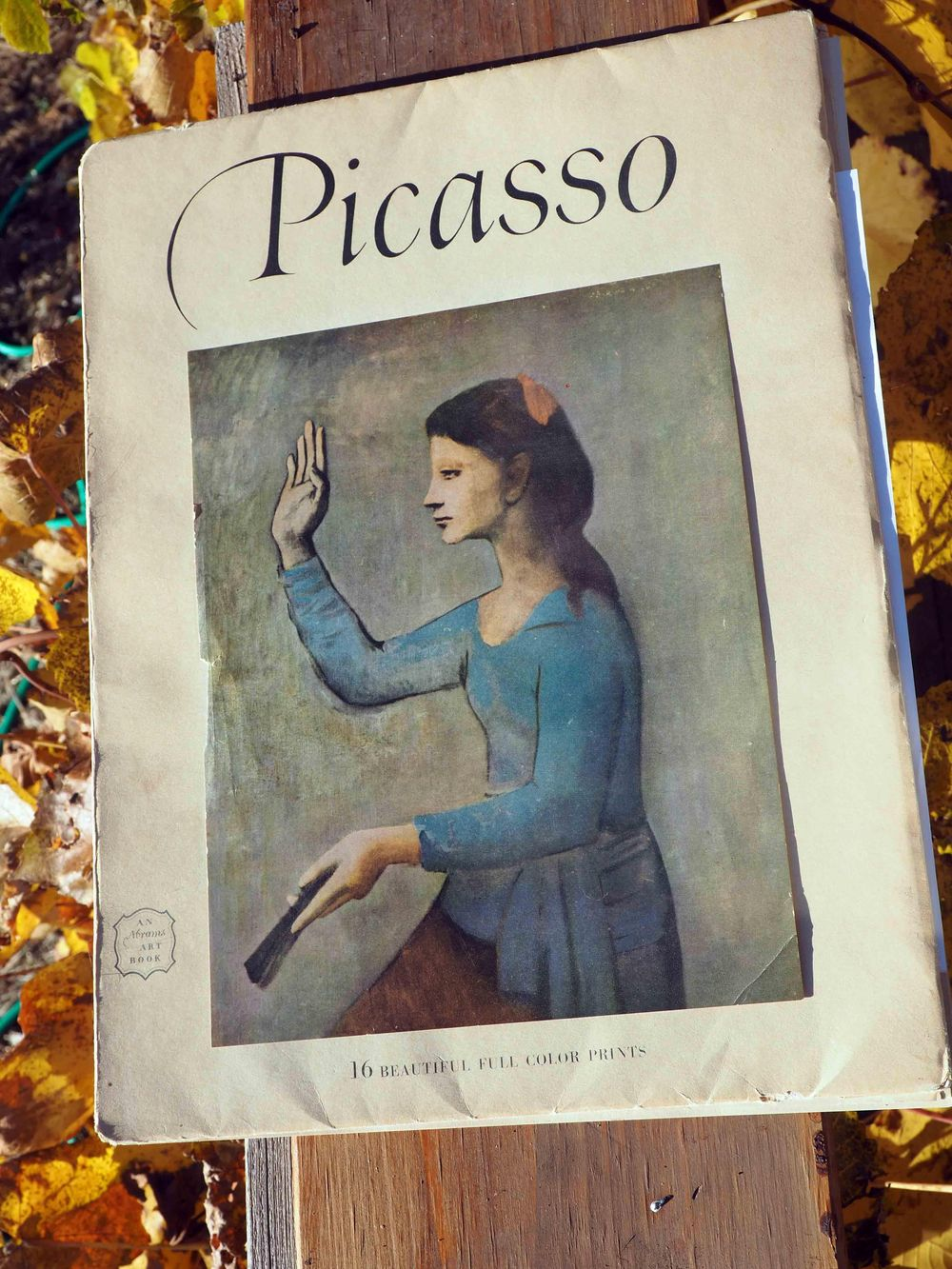 Picasso color studies, prepping for painting - image 6 - student project