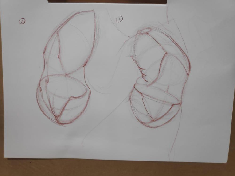Figure construction - image 30 - student project