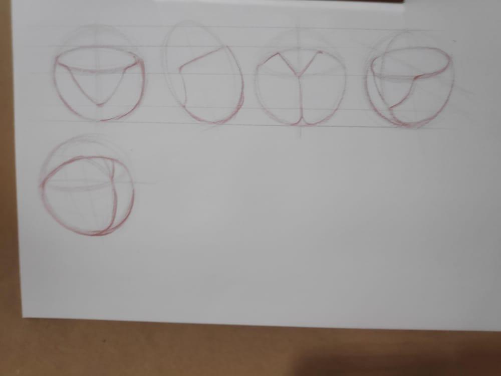 Figure construction - image 24 - student project