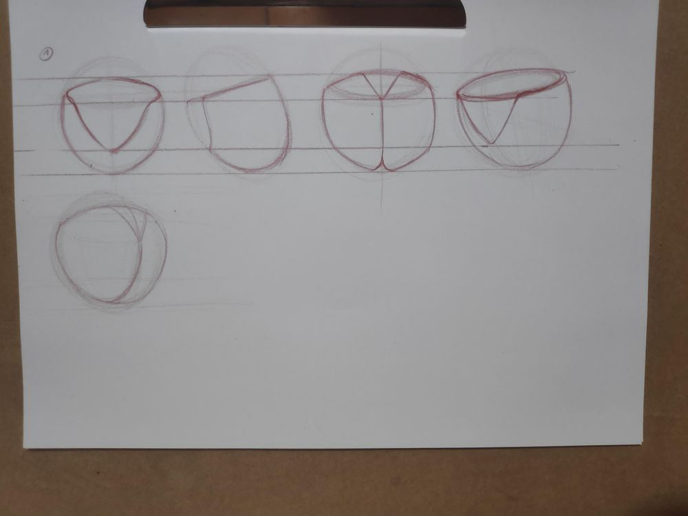 Figure construction - image 21 - student project