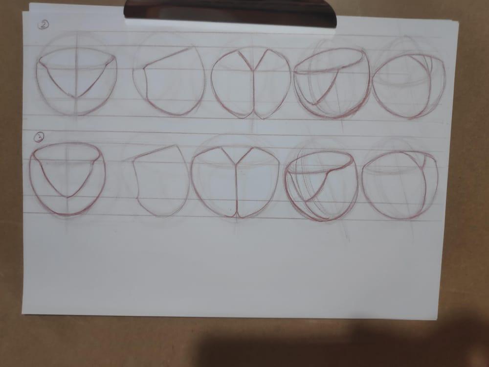 Figure construction - image 22 - student project