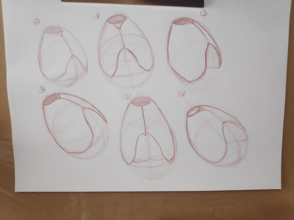 Figure construction - image 5 - student project