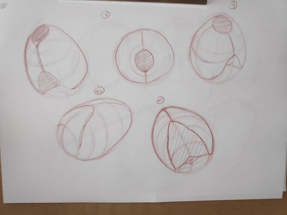 Figure construction - image 6 - student project