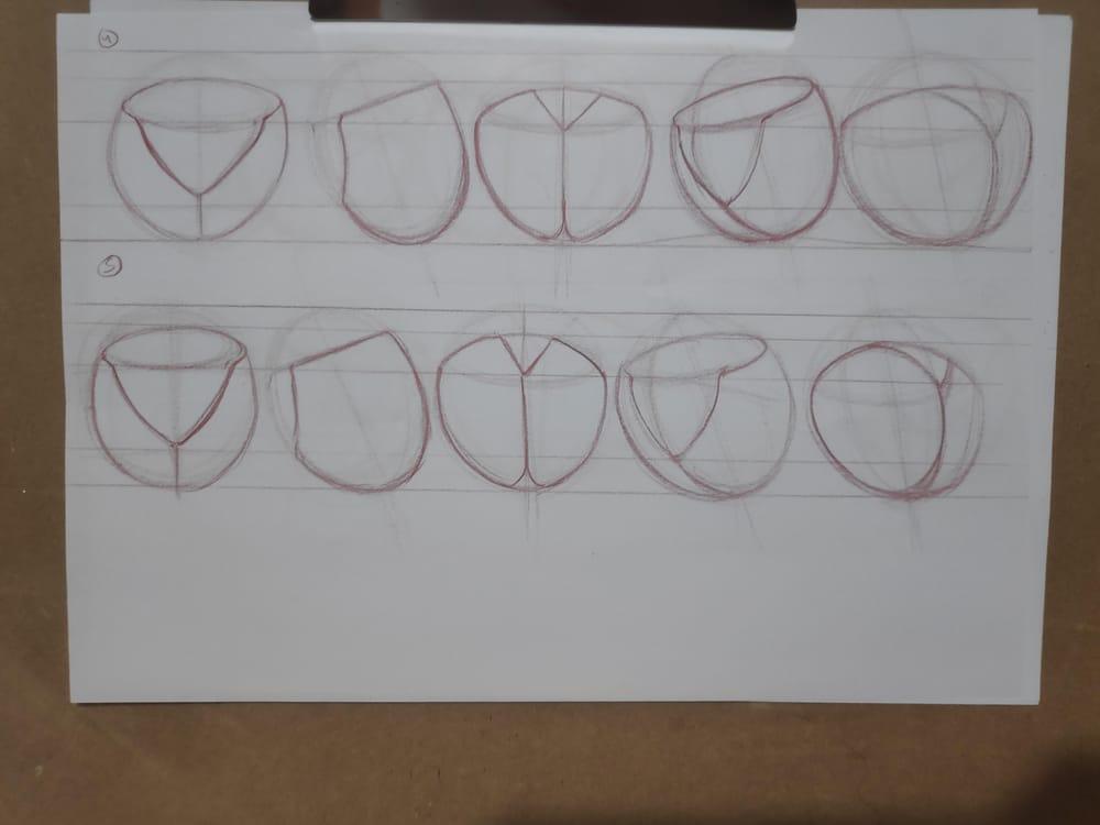 Figure construction - image 23 - student project