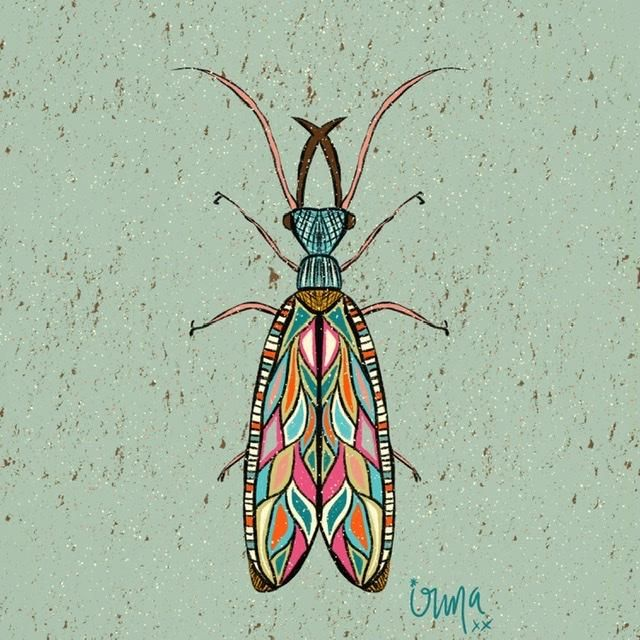 Colorfull insects! - image 1 - student project