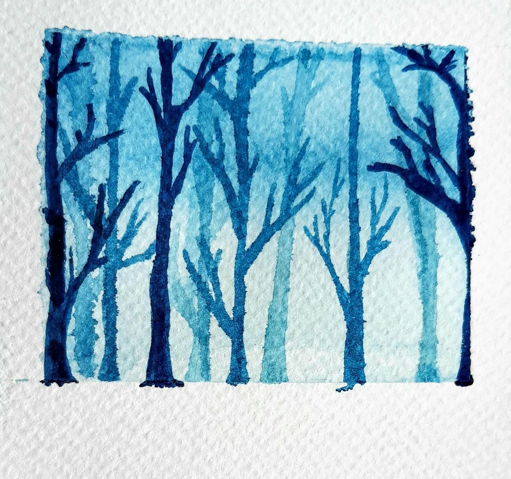 Winter forests - image 2 - student project