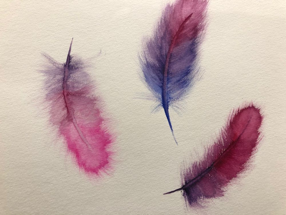 Feathers 1 - image 1 - student project