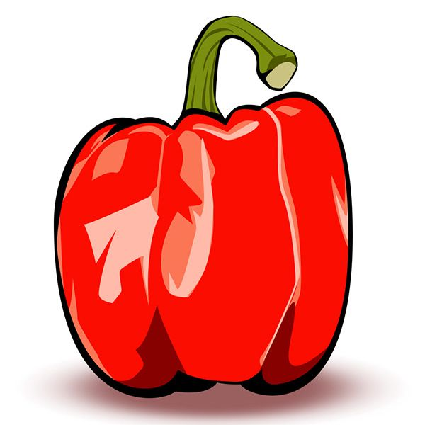 Red Bell Pepper Using pen tool - image 2 - student project