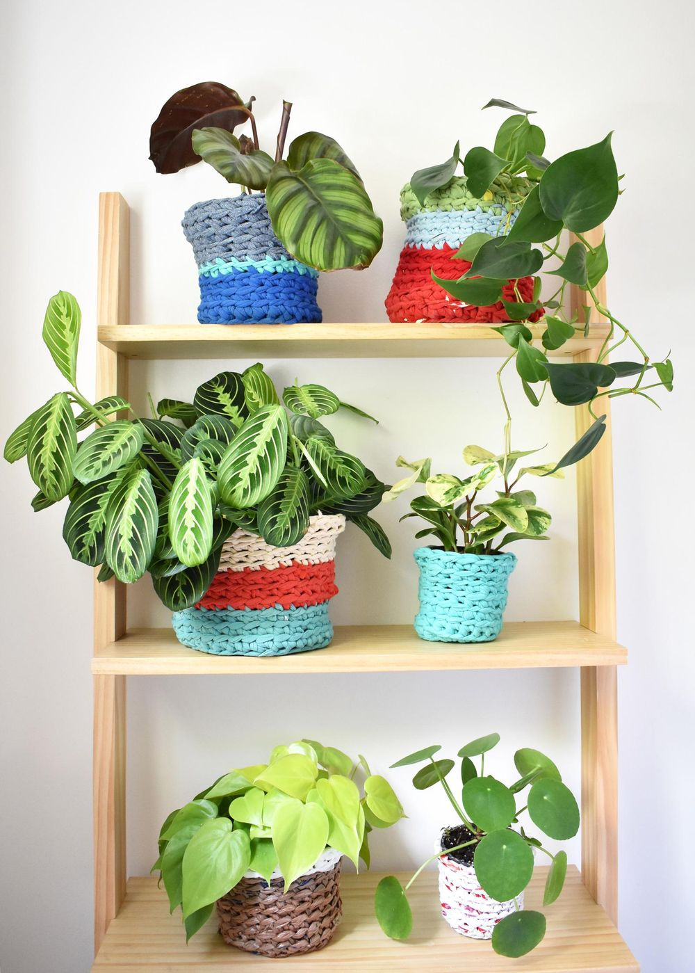 My Plant Pot Covers! - image 1 - student project