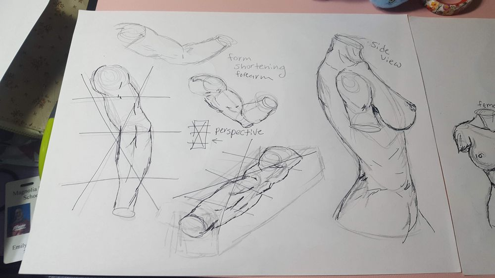 Figure Drawing - image 2 - student project