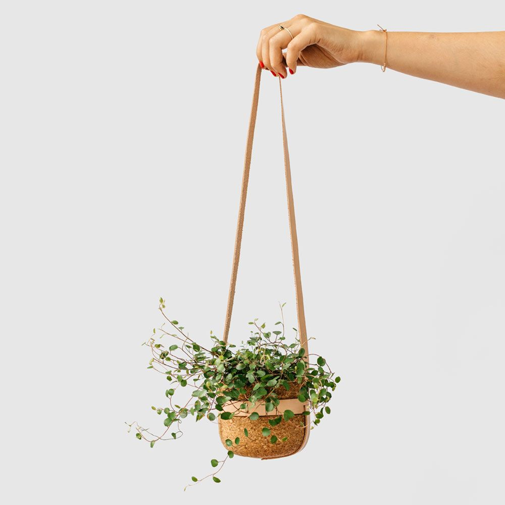 Melanie Abrantes Designs- Hanging Leather Planters - image 4 - student project