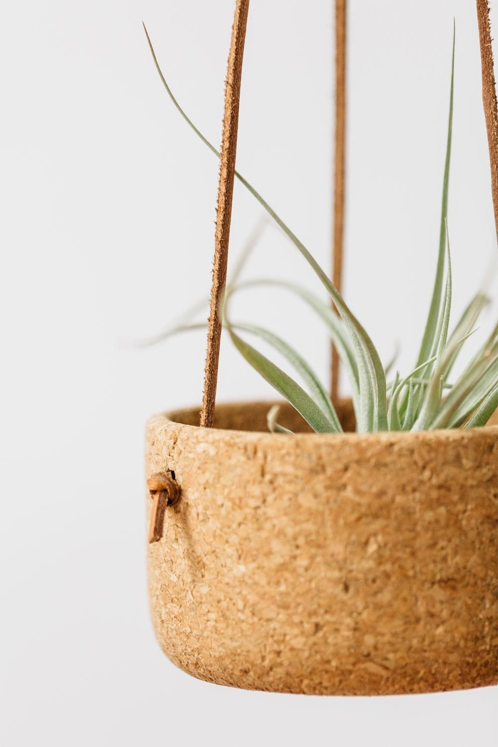 Melanie Abrantes Designs- Hanging Leather Planters - image 2 - student project