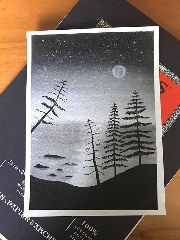 Pines - image 1 - student project