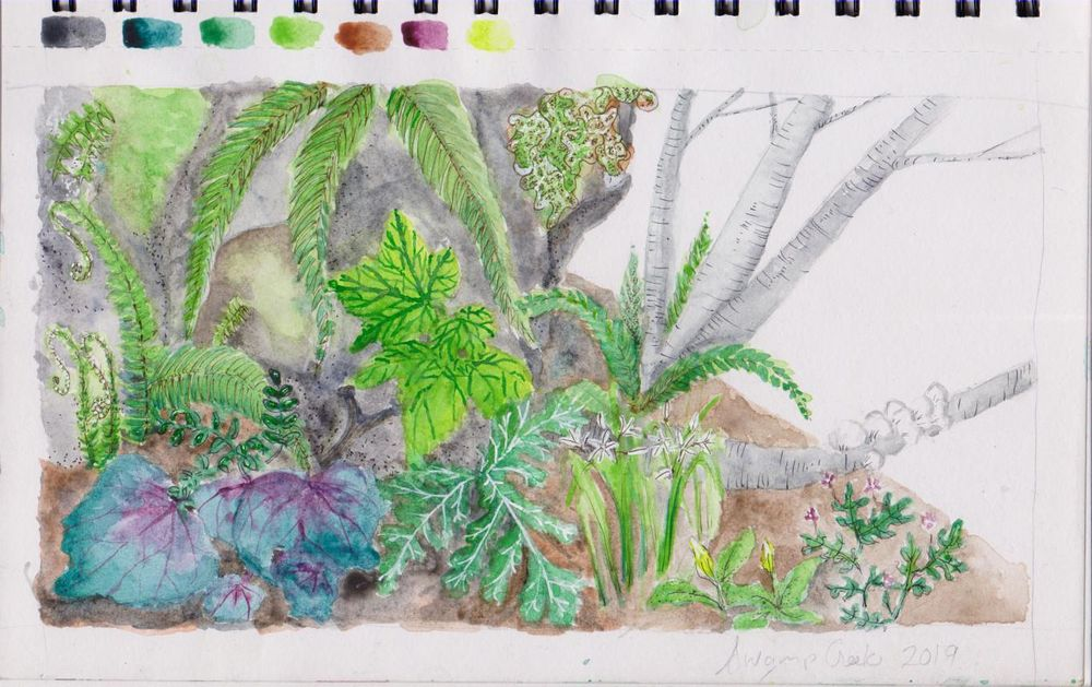 swamp creek - image 1 - student project