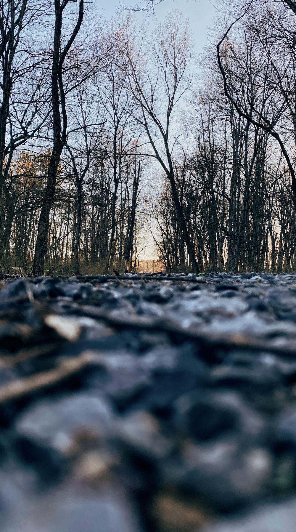Running trail - image 1 - student project