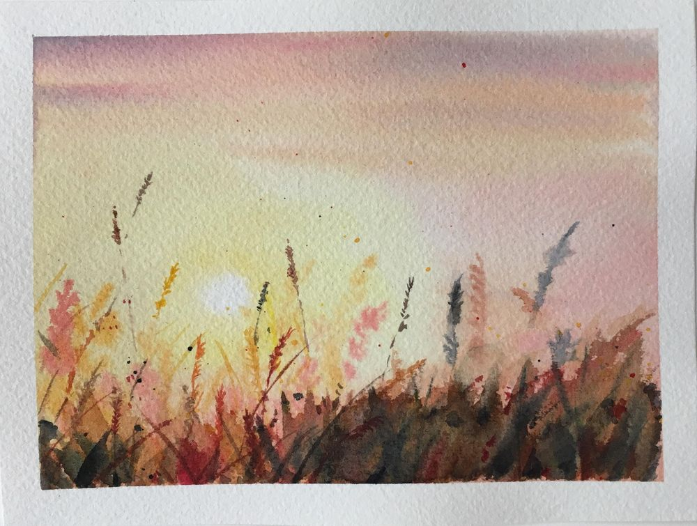 sunset in the field - image 1 - student project