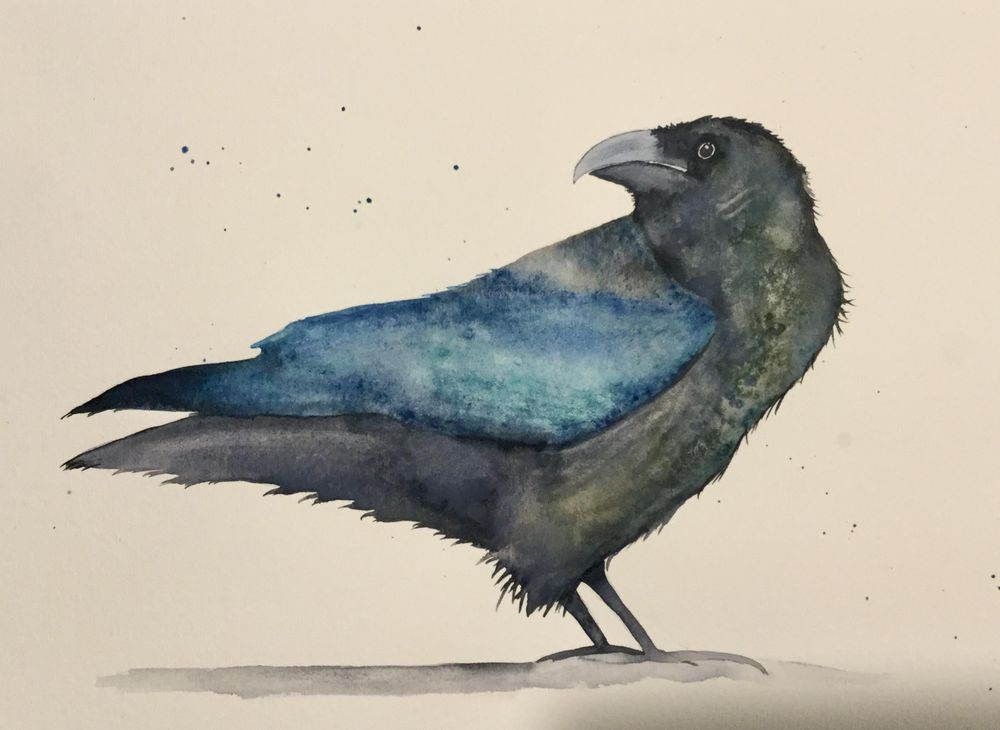 Aurelie's raven - image 1 - student project